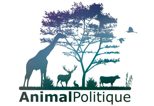 animal-politique-b