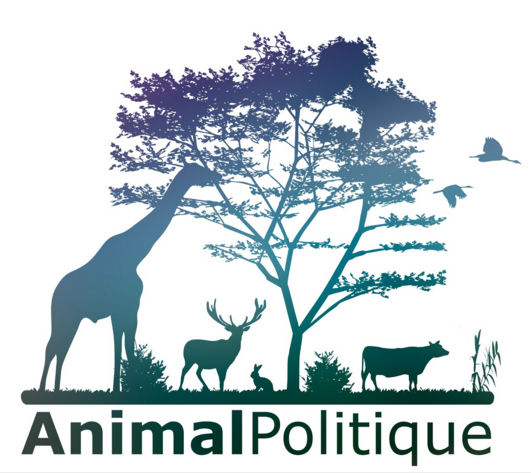 animal-politique