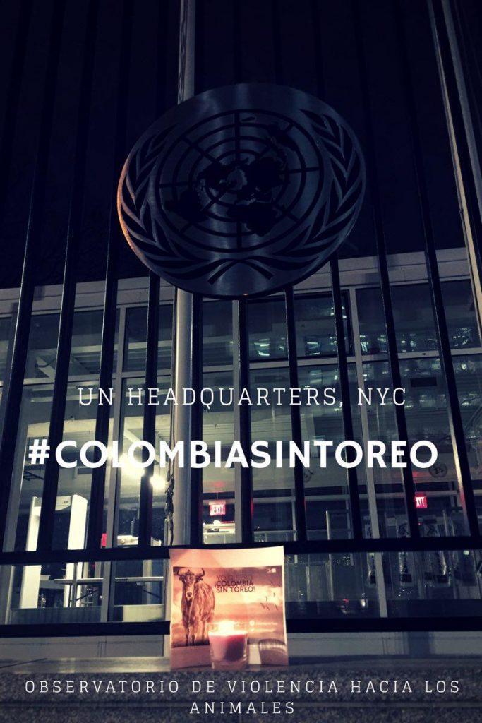 CST NYC ONU 2