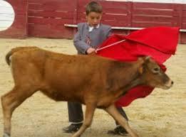 enfant veau