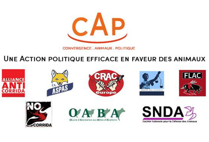 CAP logos 2