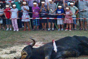 enfants taureau