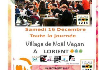 Lorient 161217b