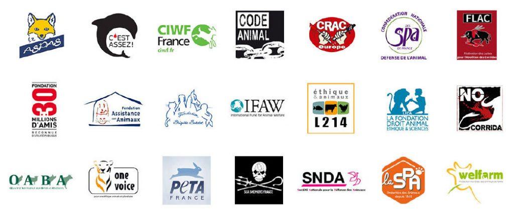 lettre poules logos