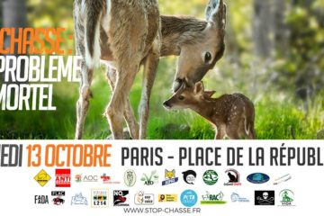 rassemblement chasse one voice