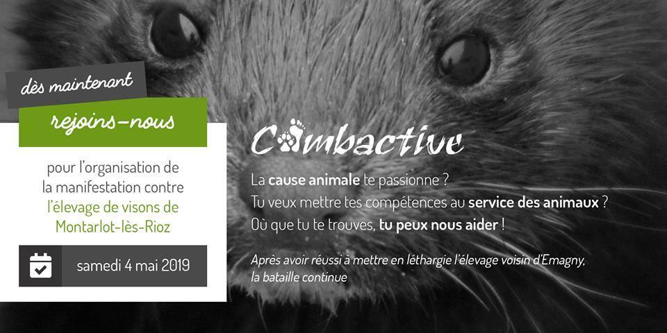 combactive vesoul 040519